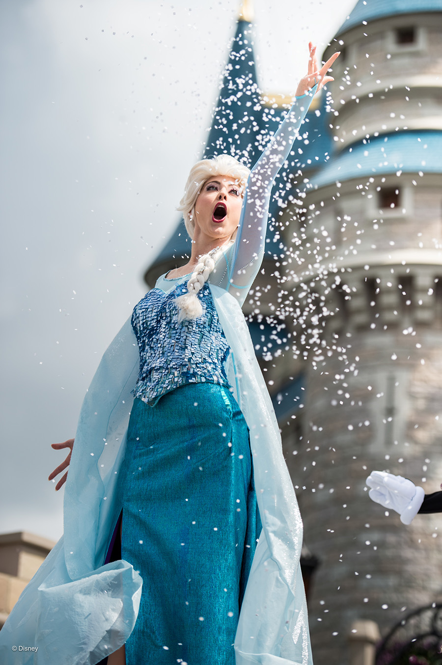 ELSA Walt Disney World
